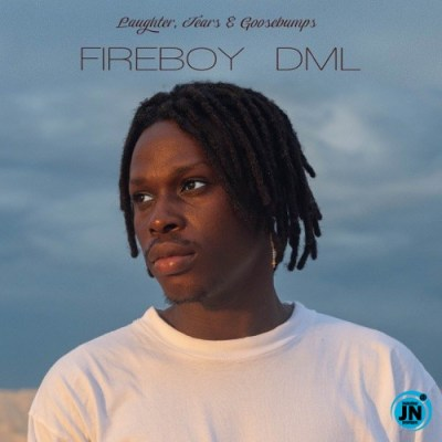 Fireboy DML - Laughter, Tears & Goosebumps (LTG) Album
