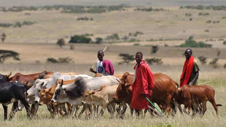 Tension Rises In Anambra State As 3 Herdsmen Found Dead