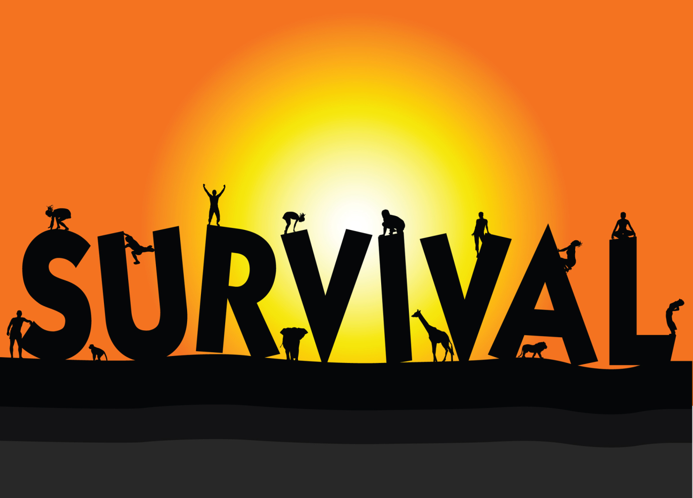 Top 24 surviving tips to carry about your everyday life