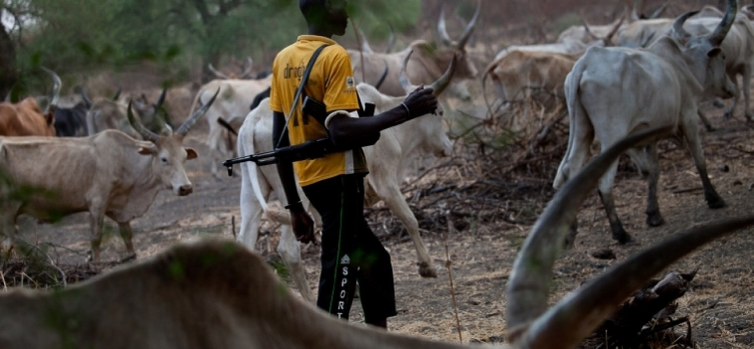 Nigerian Air Forced Accused Of Dropping Weapons For Herdsmen In Enugu