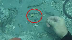 Florida family finds gold artifacts worth over $1 million from the wreckage of a ship
