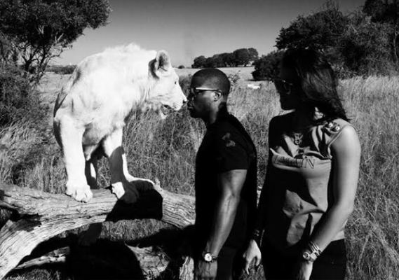 OMG! Kevin Hart got this close to a Lion and this happened
