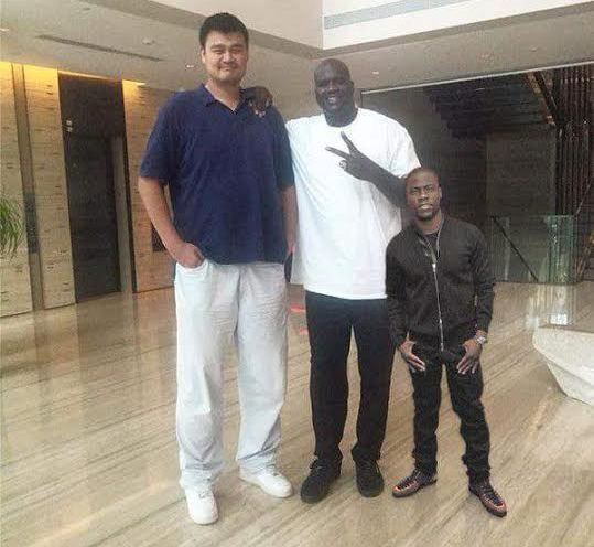 Really? Kevin Hart is this short