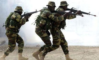 Nigerian Troops Raid Boko Haram Ambush in Borno