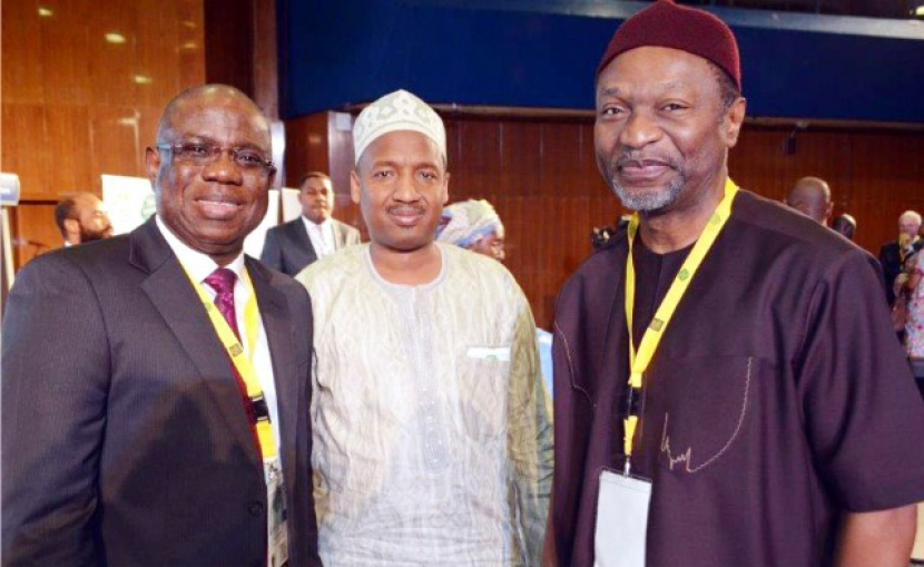 Nigerian statistical Association To Go Chartered