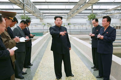 North Korea: Kim Jong-un executes an Aquarium boss after death of some turtles