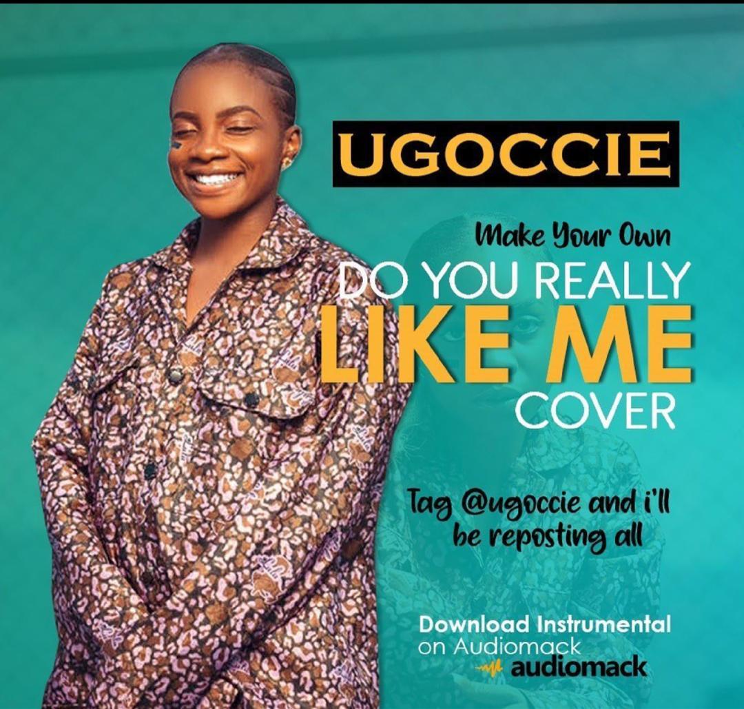 Ugoccie - DYRLM(Instrumental with Hook)